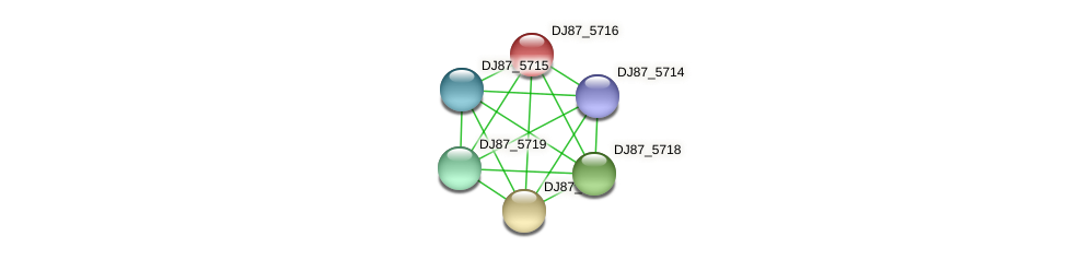 DJ87_5716 protein (Bacillus cereus) - STRING interaction network