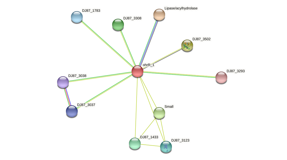 ohrR_2 protein (Bacillus cereus) - STRING interaction network