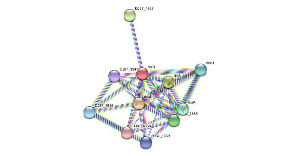 ppiB protein (Bacillus cereus) - STRING interaction network