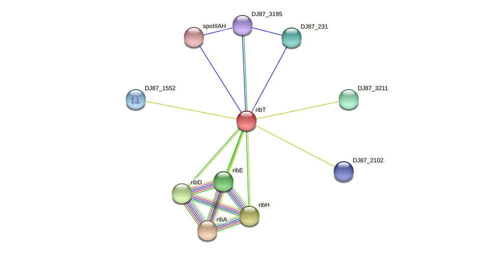 DJ87_795 protein (Bacillus cereus) - STRING interaction network