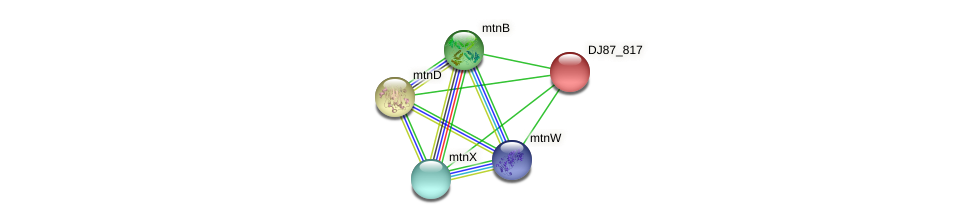 DJ87_817 protein (Bacillus cereus) - STRING interaction network