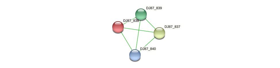 DJ87_838 protein (Bacillus cereus) - STRING interaction network