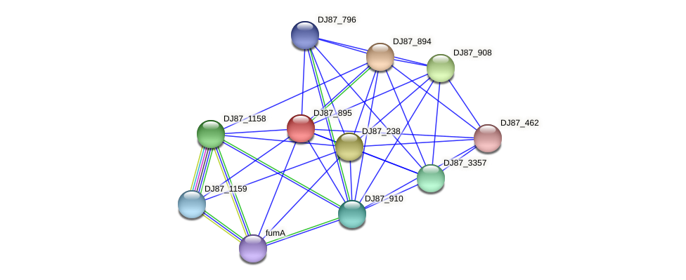 DJ87_895 protein (Bacillus cereus) - STRING interaction network