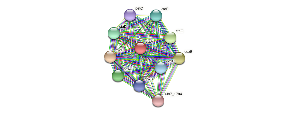 ctaA protein (Bacillus cereus) - STRING interaction network