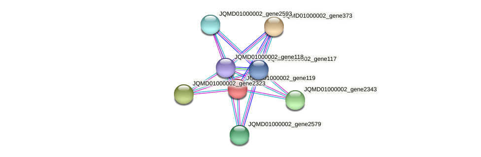 JQMD01000002_gene119 protein (Zobellia uliginosa) - STRING interaction network