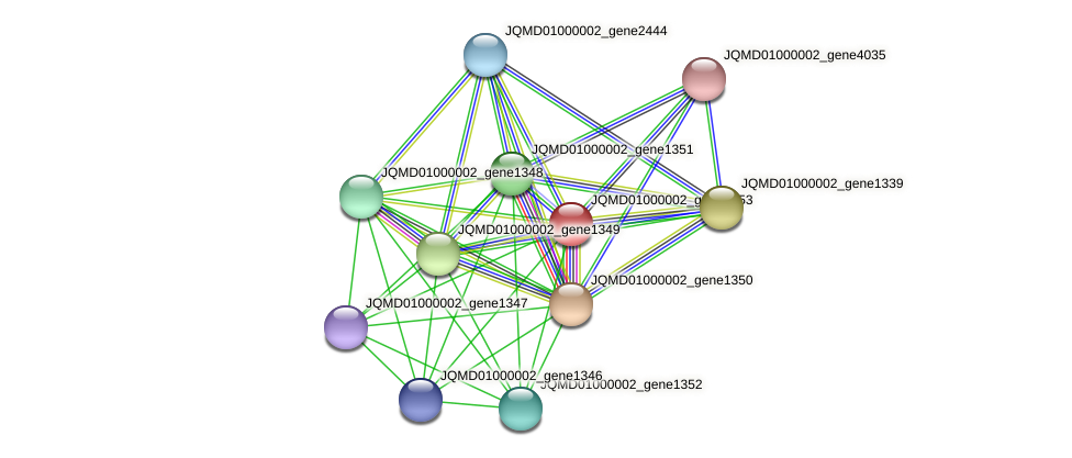 JQMD01000002_gene1353 protein (Zobellia uliginosa) - STRING interaction network