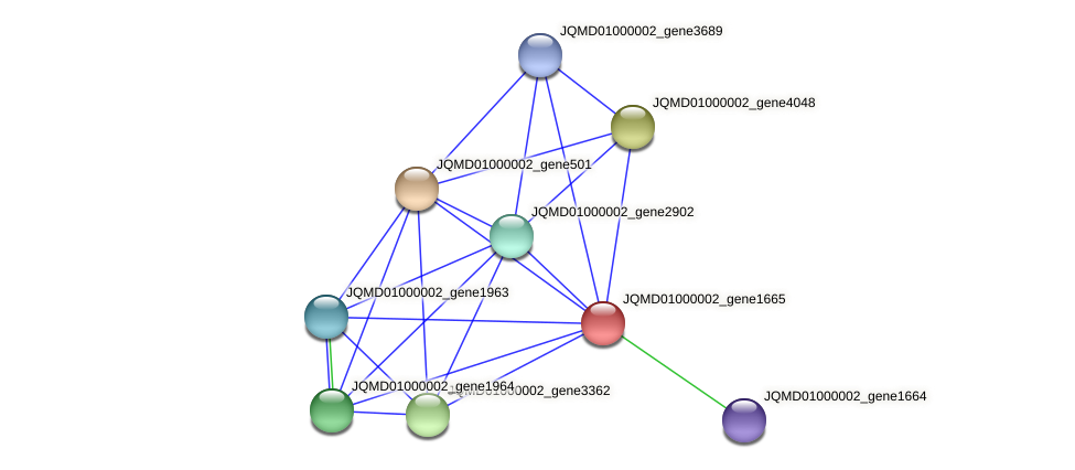JQMD01000002_gene1665 protein (Zobellia uliginosa) - STRING interaction network