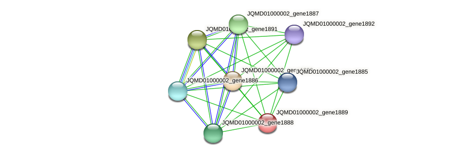 JQMD01000002_gene1889 protein (Zobellia uliginosa) - STRING interaction network