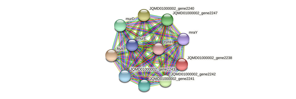 JQMD01000002_gene2238 protein (Zobellia uliginosa) - STRING interaction network