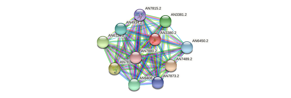AN3380.2 protein (Emericella nidulans) - STRING interaction network
