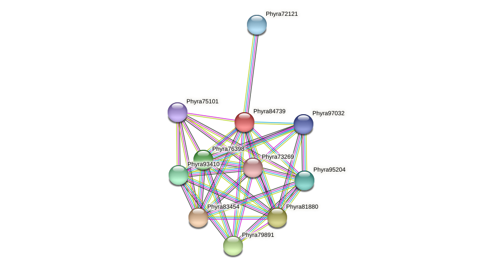 Phyra84739 protein (Phytophthora ramorum) - STRING interaction network