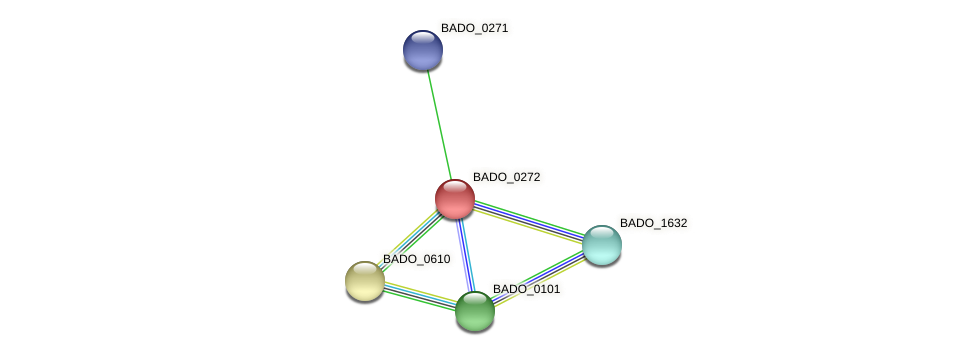 BADO_0272 protein (Bifidobacterium adolescentis) - STRING interaction network