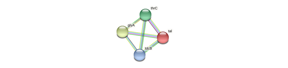 BADO_0540 protein (Bifidobacterium adolescentis) - STRING interaction network