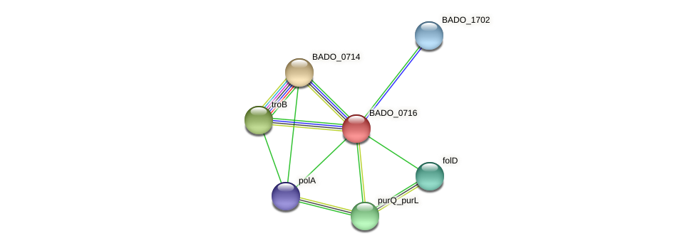 BADO_0716 protein (Bifidobacterium adolescentis) - STRING interaction network