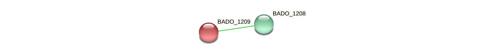 BADO_1209 protein (Bifidobacterium adolescentis) - STRING interaction network