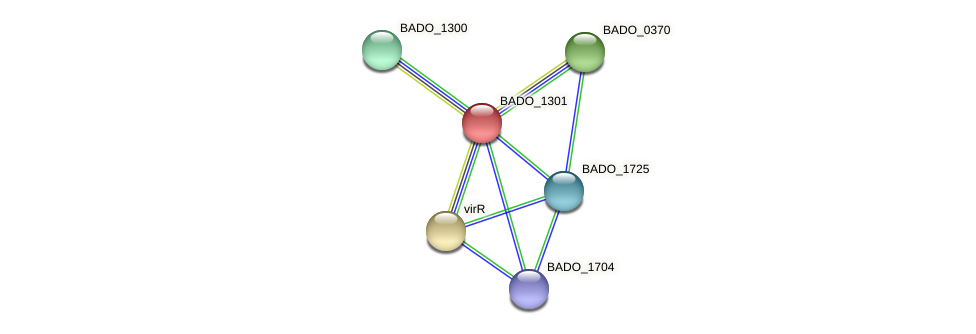 BADO_1301 protein (Bifidobacterium adolescentis) - STRING interaction network