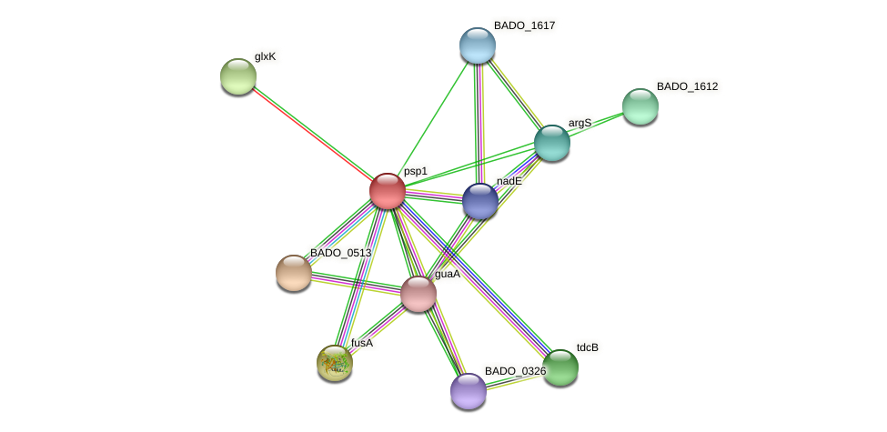BADO_1611 protein (Bifidobacterium adolescentis) - STRING interaction network