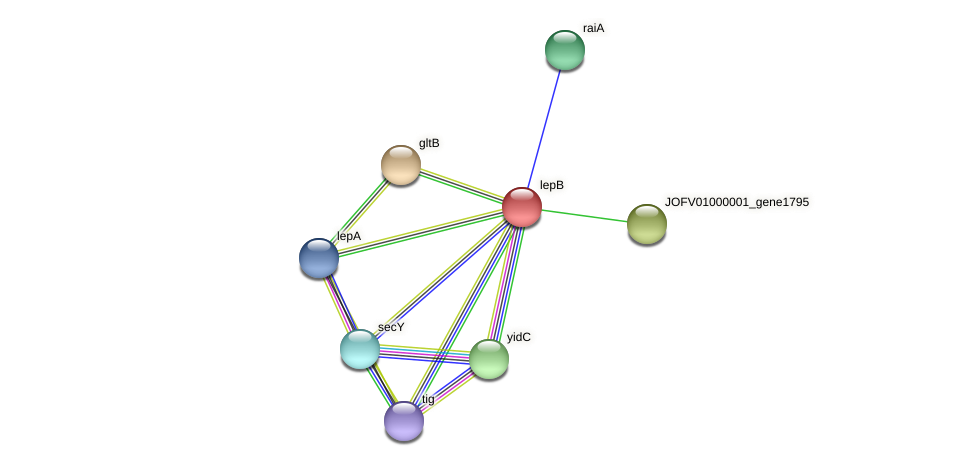 JOFV01000001_gene1796 protein (Oerskovia turbata) - STRING interaction network