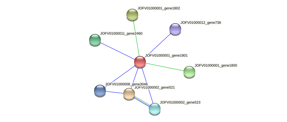 JOFV01000001_gene1801 protein (Oerskovia turbata) - STRING interaction network