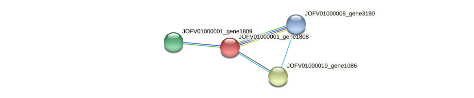 JOFV01000001_gene1808 protein (Oerskovia turbata) - STRING interaction network