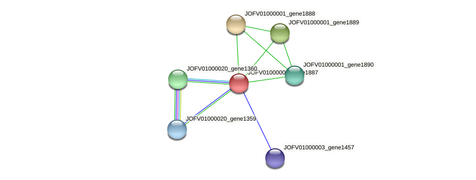 JOFV01000001_gene1887 protein (Oerskovia turbata) - STRING interaction network
