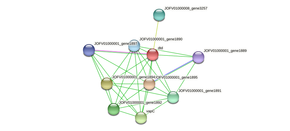 JOFV01000001_gene1896 protein (Oerskovia turbata) - STRING interaction network