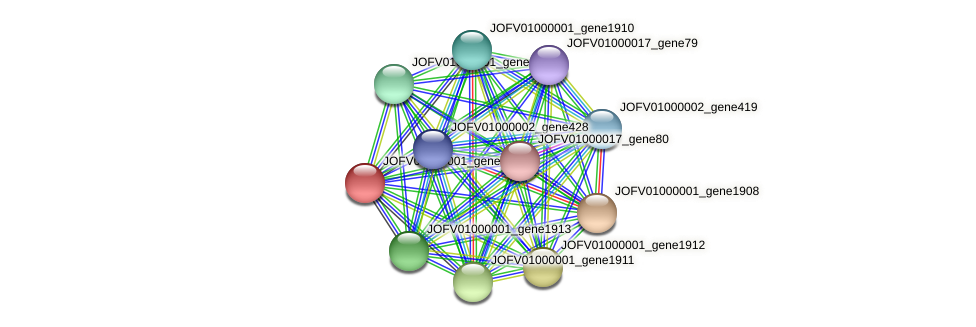 JOFV01000001_gene1909 protein (Oerskovia turbata) - STRING interaction network