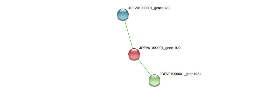 JOFV01000001_gene1922 protein (Oerskovia turbata) - STRING interaction network