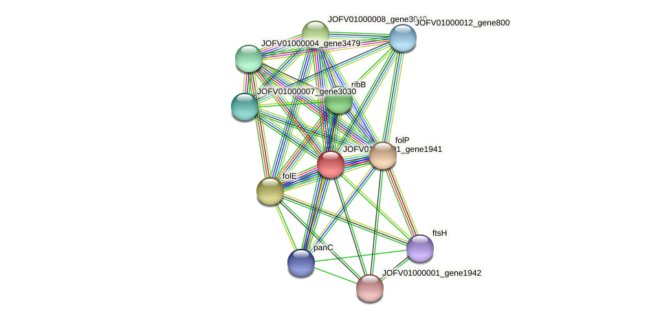 JOFV01000001_gene1941 protein (Oerskovia turbata) - STRING interaction network