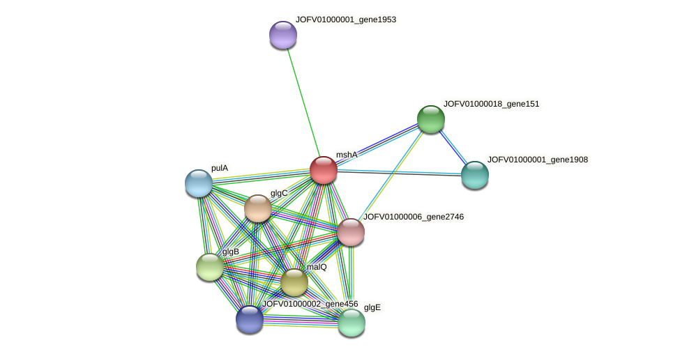 JOFV01000001_gene1954 protein (Oerskovia turbata) - STRING interaction network