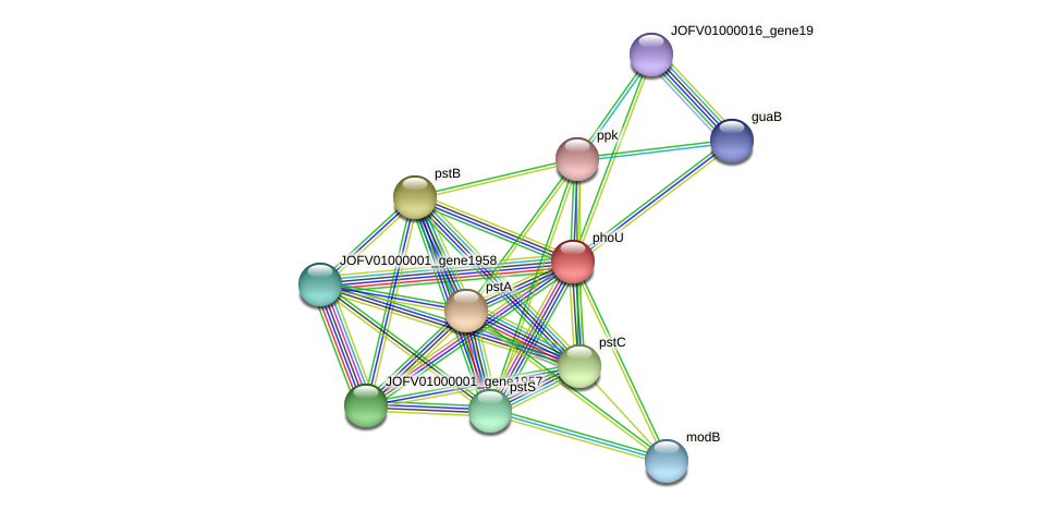 JOFV01000001_gene1956 protein (Oerskovia turbata) - STRING interaction network