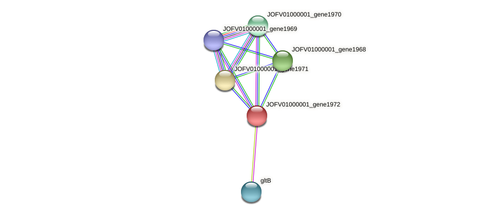 JOFV01000001_gene1972 protein (Oerskovia turbata) - STRING interaction network