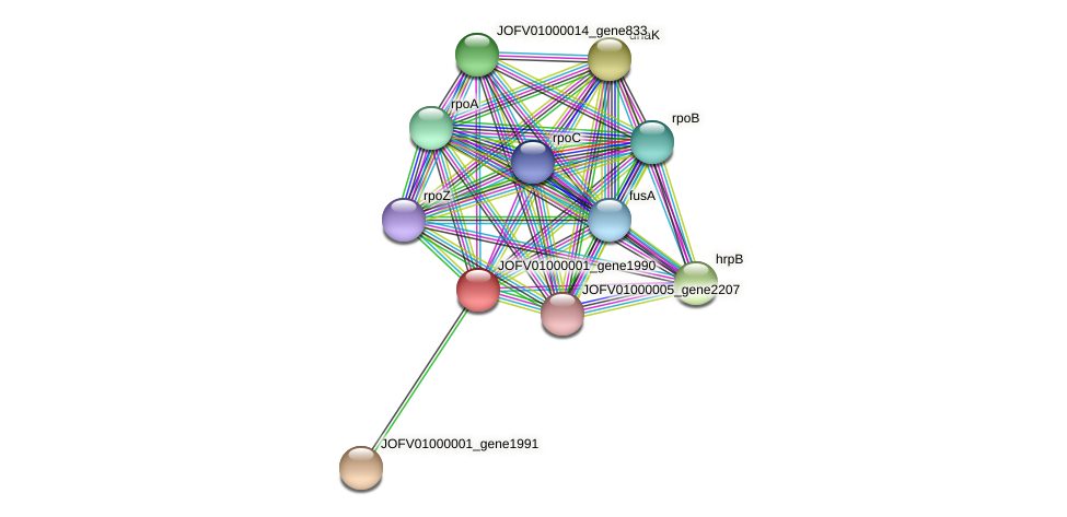 JOFV01000001_gene1990 protein (Oerskovia turbata) - STRING interaction network