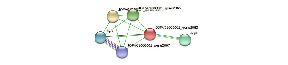 JOFV01000001_gene2063 protein (Oerskovia turbata) - STRING interaction network