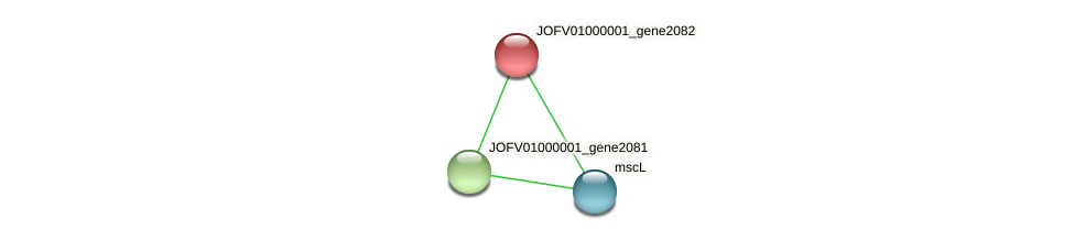 JOFV01000001_gene2082 protein (Oerskovia turbata) - STRING interaction network