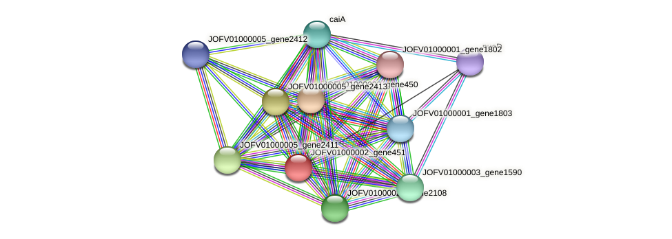 JOFV01000002_gene451 protein (Oerskovia turbata) - STRING interaction network