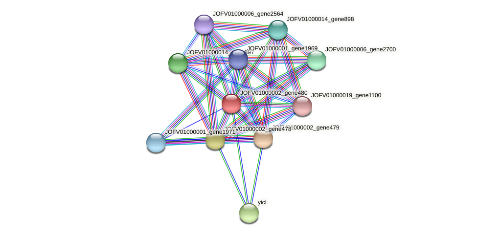 JOFV01000002_gene480 protein (Oerskovia turbata) - STRING interaction network