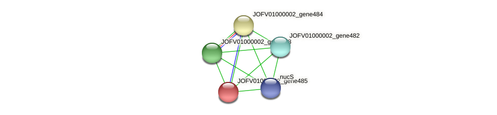 JOFV01000002_gene485 protein (Oerskovia turbata) - STRING interaction network