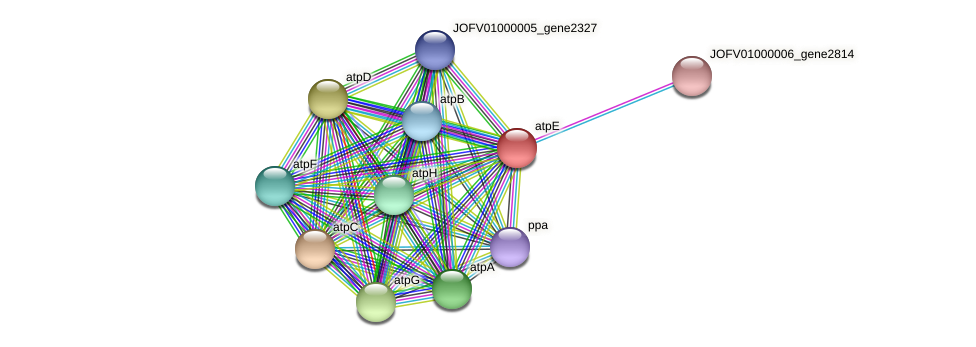JOFV01000002_gene494 protein (Oerskovia turbata) - STRING interaction network