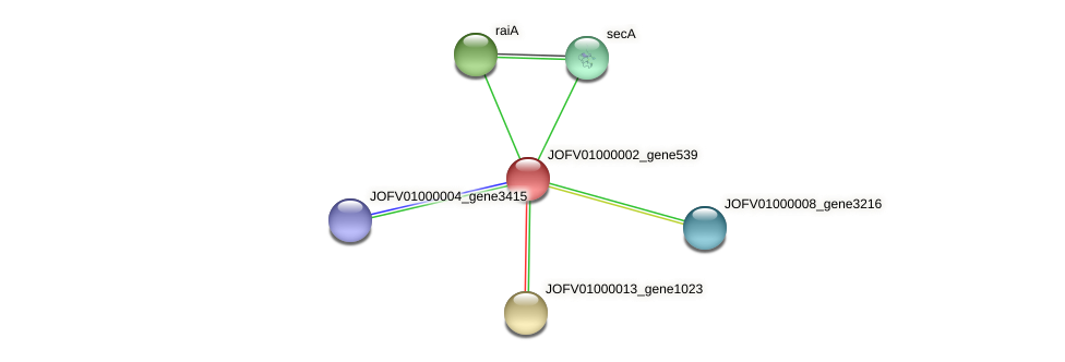 JOFV01000002_gene539 protein (Oerskovia turbata) - STRING interaction network