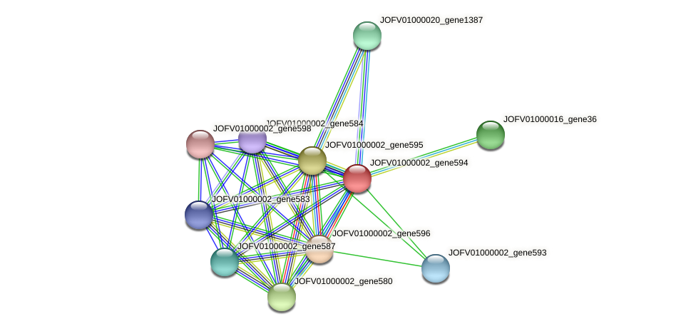 JOFV01000002_gene594 protein (Oerskovia turbata) - STRING interaction network