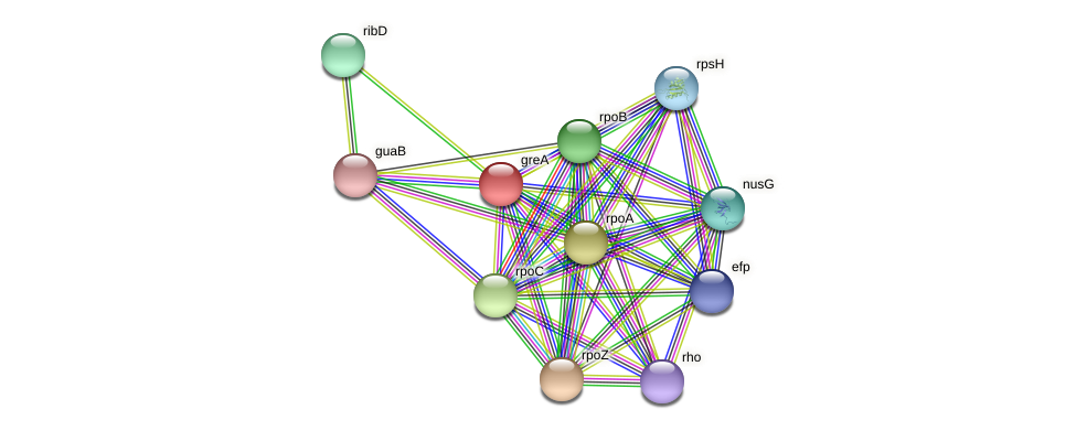 JOFV01000002_gene647 protein (Oerskovia turbata) - STRING interaction network