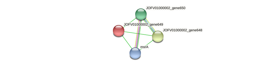 JOFV01000002_gene649 protein (Oerskovia turbata) - STRING interaction network
