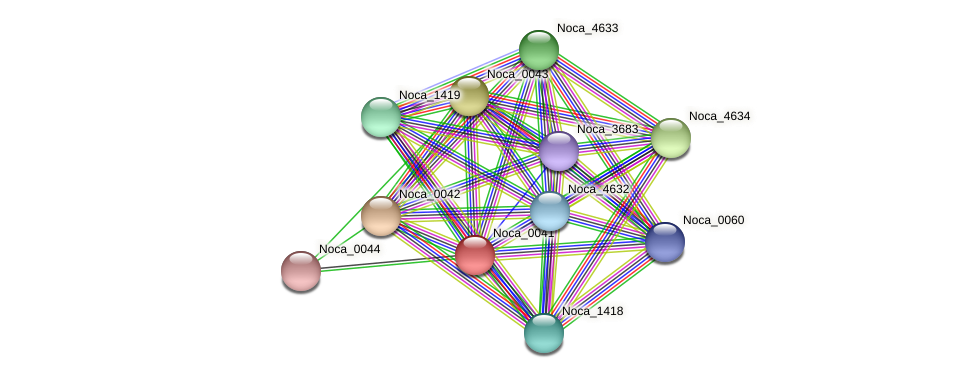 Noca_0041 protein (Nocardioides sp. JS614) - STRING interaction network