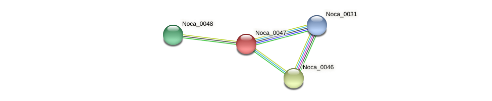 Noca_0047 protein (Nocardioides sp. JS614) - STRING interaction network