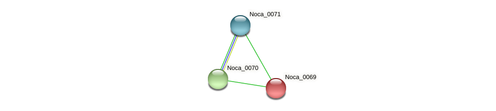 Noca_0069 protein (Nocardioides sp. JS614) - STRING interaction network