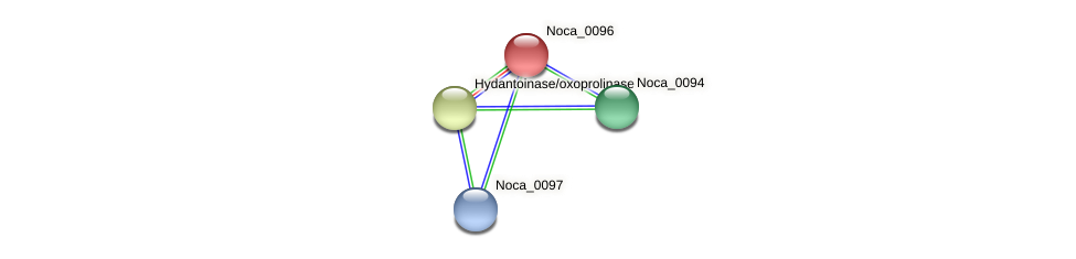 Noca_0096 protein (Nocardioides sp. JS614) - STRING interaction network