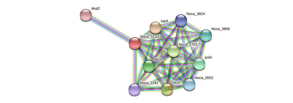 Noca_0133 protein (Nocardioides sp. JS614) - STRING interaction network