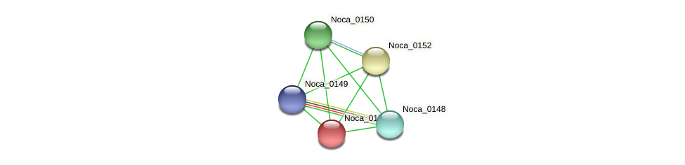 Noca_0151 protein (Nocardioides sp. JS614) - STRING interaction network