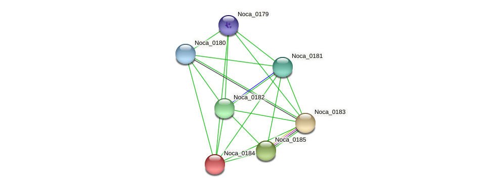 Noca_0184 protein (Nocardioides sp. JS614) - STRING interaction network